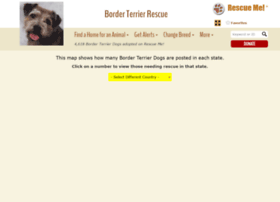 borderterrier.rescueme.org