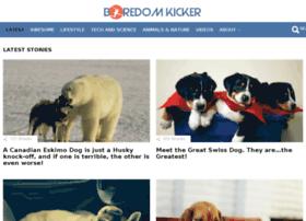 boredomkicker.com