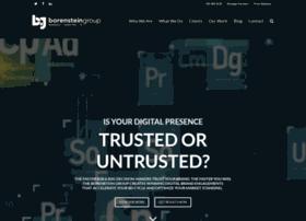 borensteingroup.com