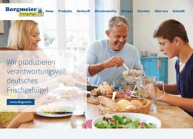 borgmeier.com
