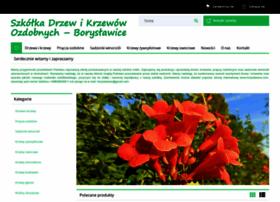 boryslawice.com