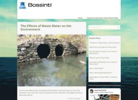 bossintl.co.uk