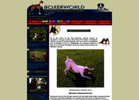 boxerworld.com