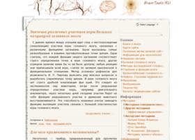 braintools.ru