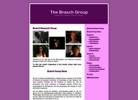 brasch-group.com
