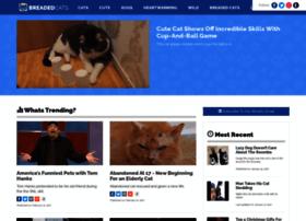 breadedcats.com