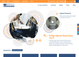 bridgeagency.pl