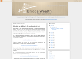 bridgewealthmanagement.blogspot.com