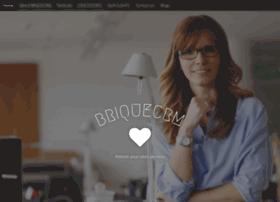 briquecrm.com