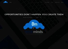briskminds.com