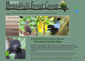 broadbillforestcamp.com
