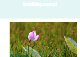 broilking.com.pl