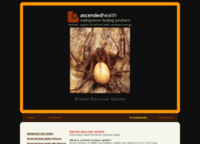 brown-recluse-spider.ascendedhealth.com