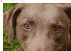 browndogcbr.blogspot.ca