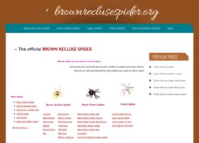brownreclusespider.org