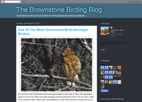 brownstonebirder.blogspot.nl