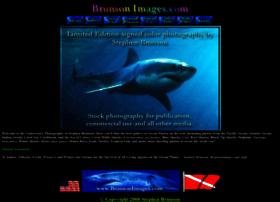 brunsonimages.com