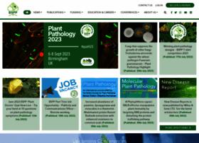 bspp.org.uk