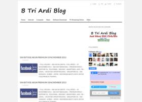 btriardiblog.blogspot.com