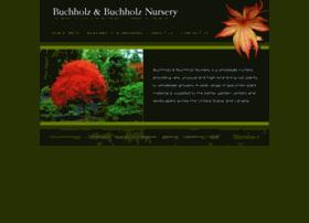 buchholznursery.com