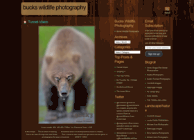 buckswildlifephotography.wordpress.com