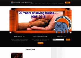 buddiesthrubullies.org