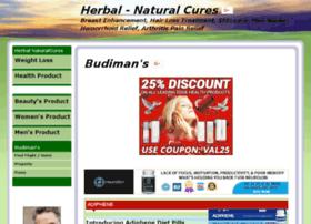 budimans.net