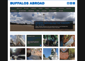 buffalosabroad.com