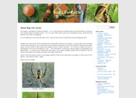 buglifecycle.com