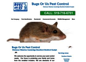 bugsorus.org
