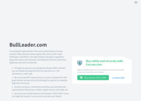 bullleader.com
