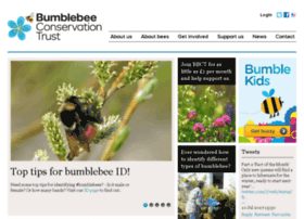 bumblebeeconservation.org.uk