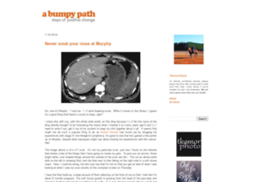 bumpypath.blogspot.com