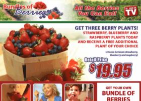 bundlesofberries.com