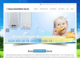 bursademirdokumservis.net