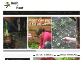 bushorplant.com