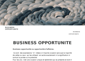 businessopportunite.com