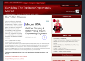 businessopportunitymarket.com