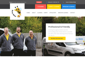busybees-cleaning.com