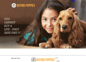 buyingpuppies.com