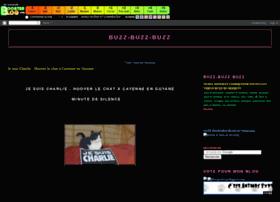 buzzbuz.boosterblog.com