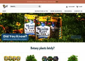 buzzyseeds.com