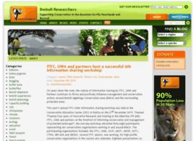 bwindiresearchers.wildlifedirect.org