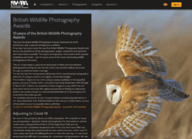 bwpawards.org