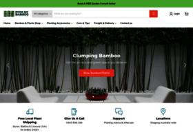 byronbaybamboo.com.au