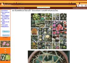 cactusstation.pantown.com