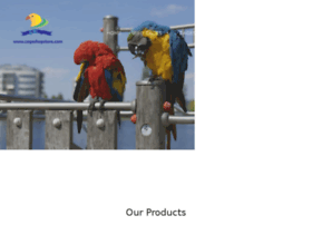 cage-shop-store.myshopify.com