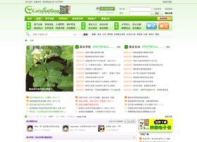 caiyoubang.com