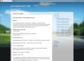 calismanotum.blogspot.com.tr