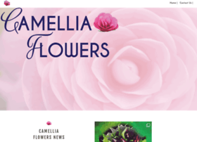camelliaflowers.com.au